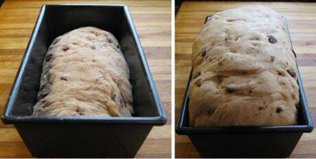 Gebakken rozijnenbrood in de vorm voor en na het rijzen, gekneed met de hand